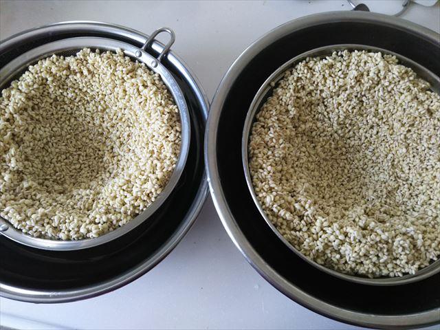 麦の水切り